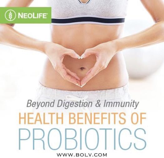 Probiotics You Need to Know About